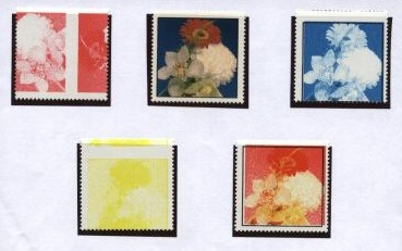 Egypt print exp flowers.jpg